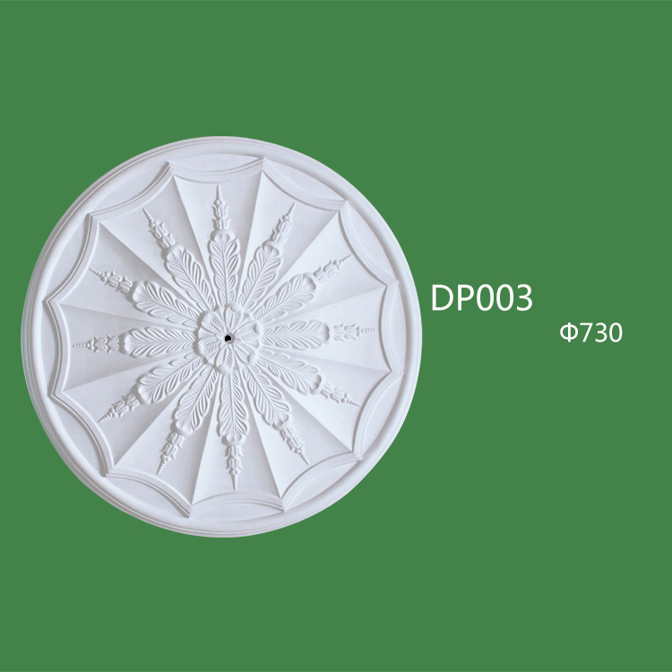 DP003