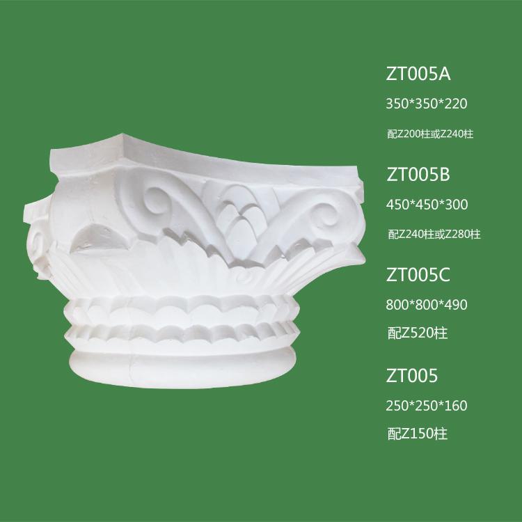 ZT005